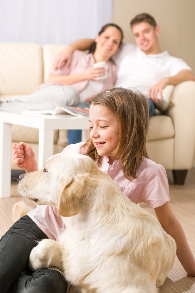 How to Select the Right Dog for Your Family