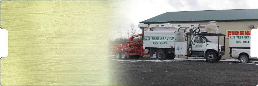 Welcome to Als Tree Care Service