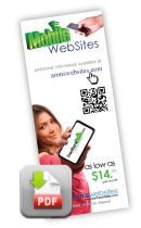 Crazy Simple Mobile Websites Brochure