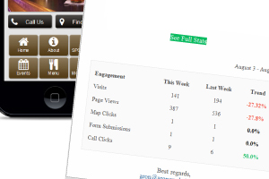 Track your mobile website traffic