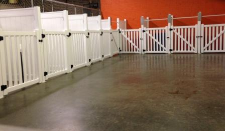 Dog Daycare Dog Boarding By Carolinas Critter Sitters